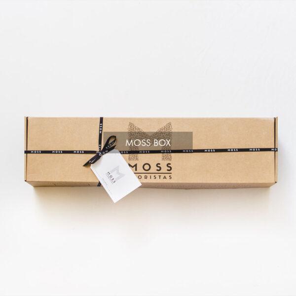 6 Moss Box